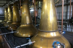 Glen Spey Distillery stills in Rothes