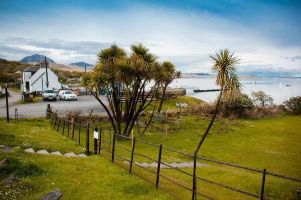 Jura Distillery actually has palm trees outside it! Here is the proof!
