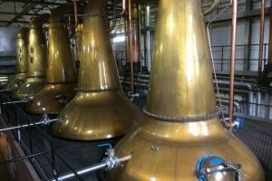 Glen Spey Distillery stills in Rothes