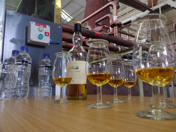 Drams lined up to be consumed at Glenlossie Distillery, Speyside